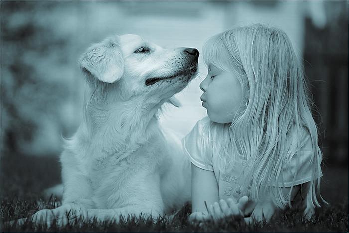 Diventa Operatore IAA   -   Pet Therapy