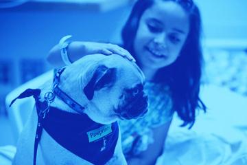 Specializzazione Ospedaliera IAA - Pet Therapy