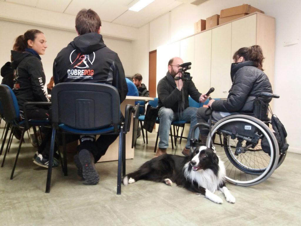 Tecnico cani d'assistenza disabili motori
