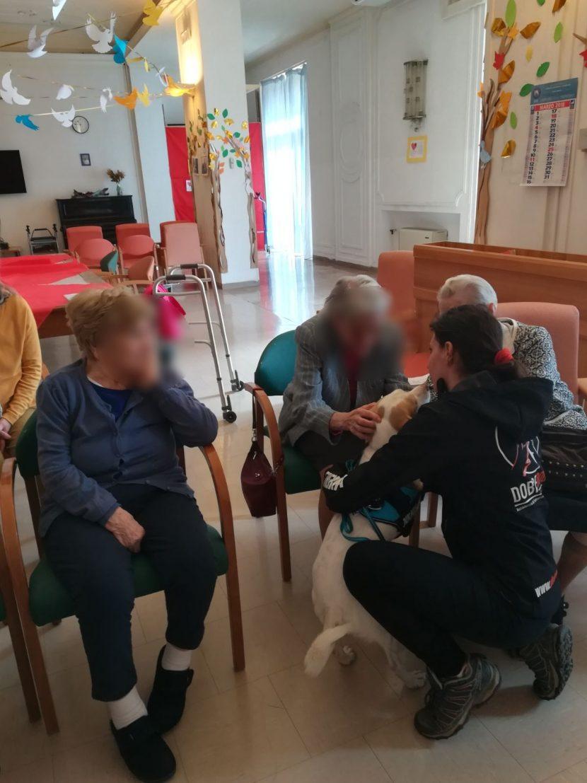 Pet Therapy nei centri anziani