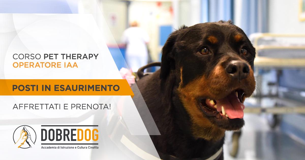 Dea Rottweiler - Corso Pet Therapy Proedeutico