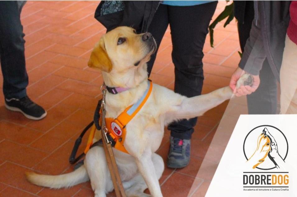 Visita alla scuola nazionale cani guida per ciechi