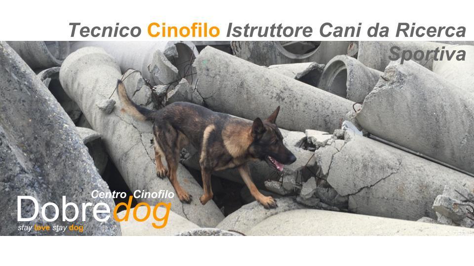 Corso istruttori cani da ricerca