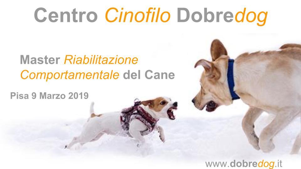 Master in Riabilitazione Comportamentale del cane, a Pisa il 9/03/2019
