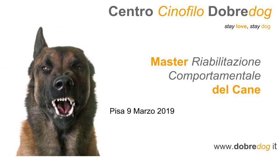 Master in Riabilitazione Comportamentale del Cane