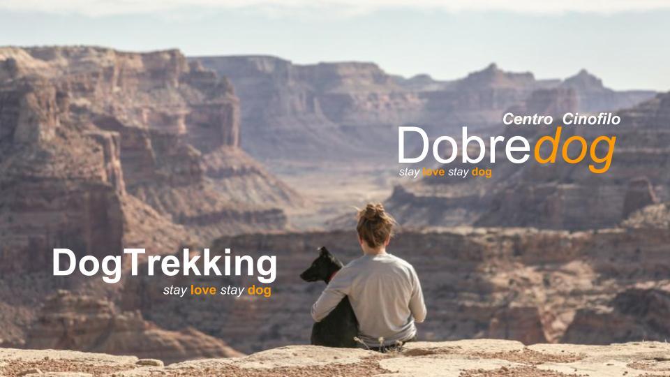 Il dog trekking è un'esperienza per te ed il tuo cane, da vivere in contatto con la natura