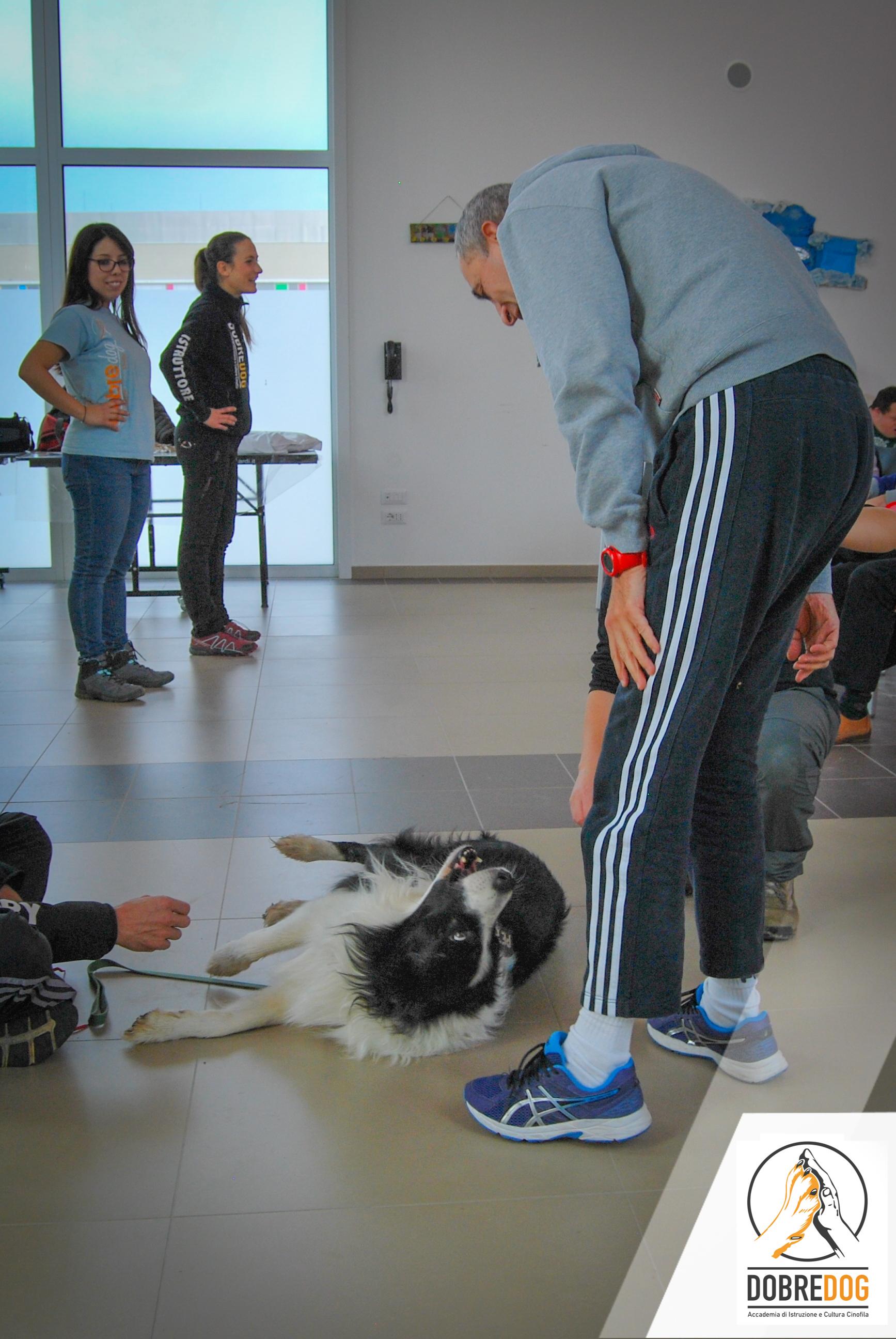 Progetto Pet Therapy persone e cani in movimento Centro Cinofilo Dobredog Pisa