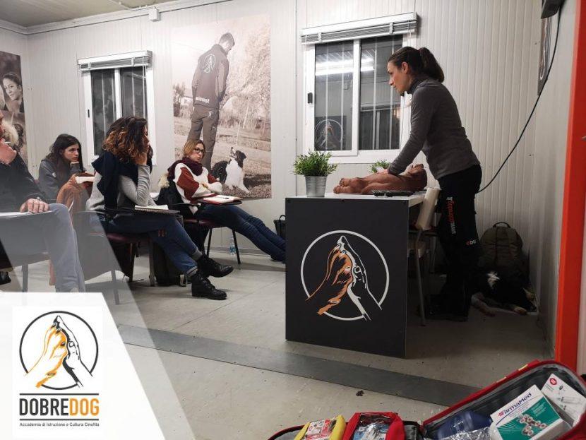 Corso primo soccorso al cane - Centro Cinofilo Dobredog