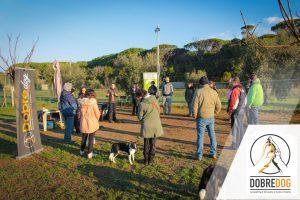 Classi di comunicazione e socializzazione al Centro Cinofilo Dobredog di Livorno