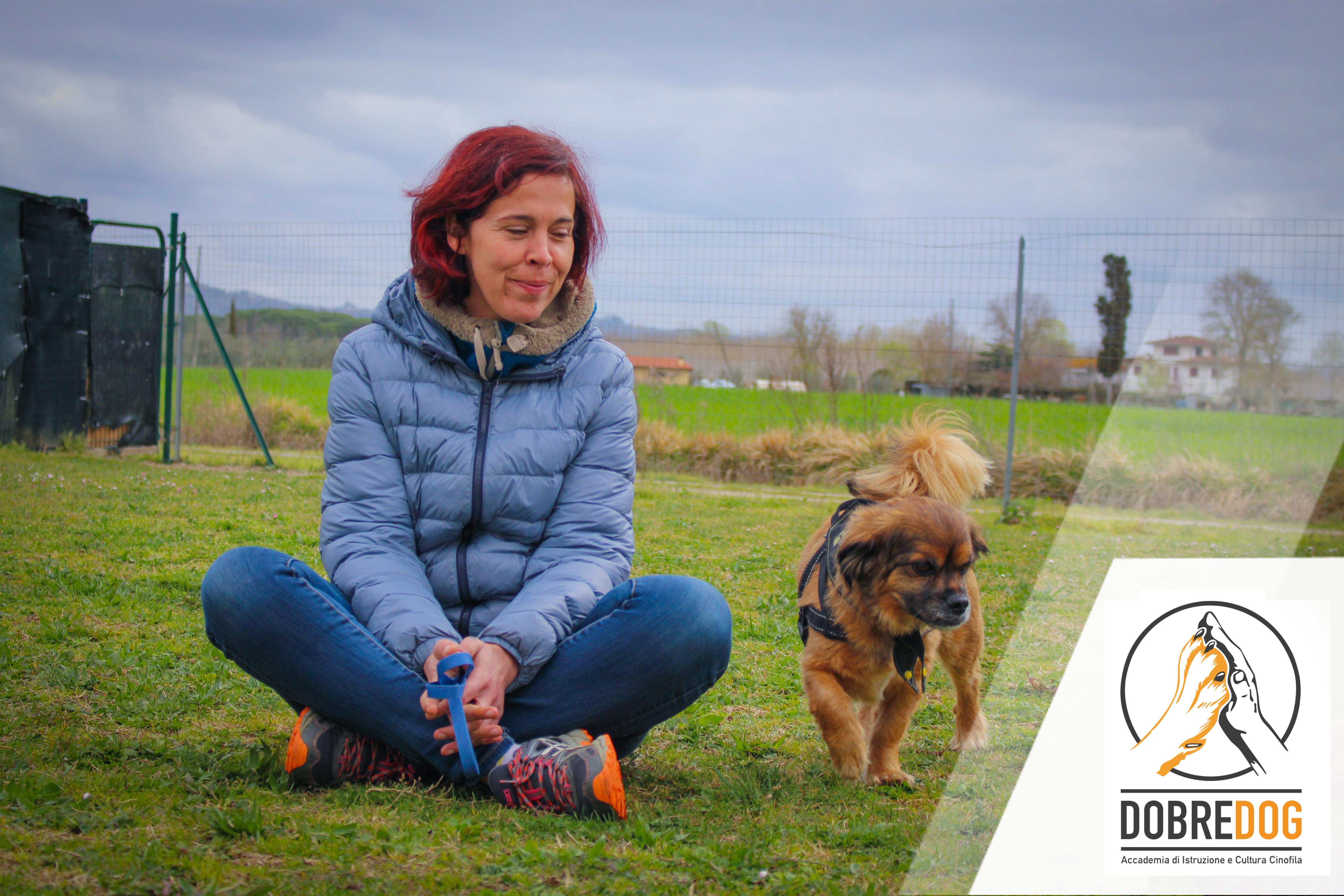Classi di Comunicazione e socializzazione del cane - Centro Cinofilo Dobredog Pisa e Livorno