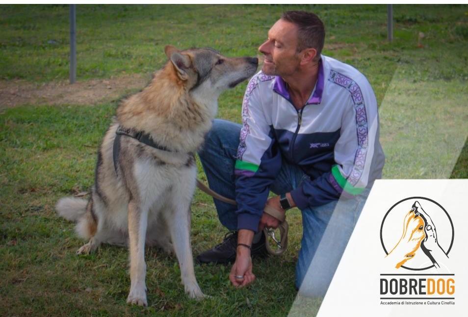 Classi di Comunicazione e socializzazione del cane - Dobredog