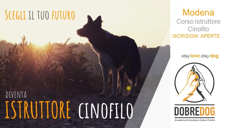 Corso Istruttore Cinofilo Modena - Centro Cinofilo Dobredog