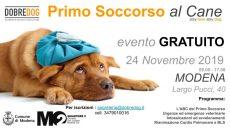Convegno Primo Soccorso al cane - Dobredog Modena