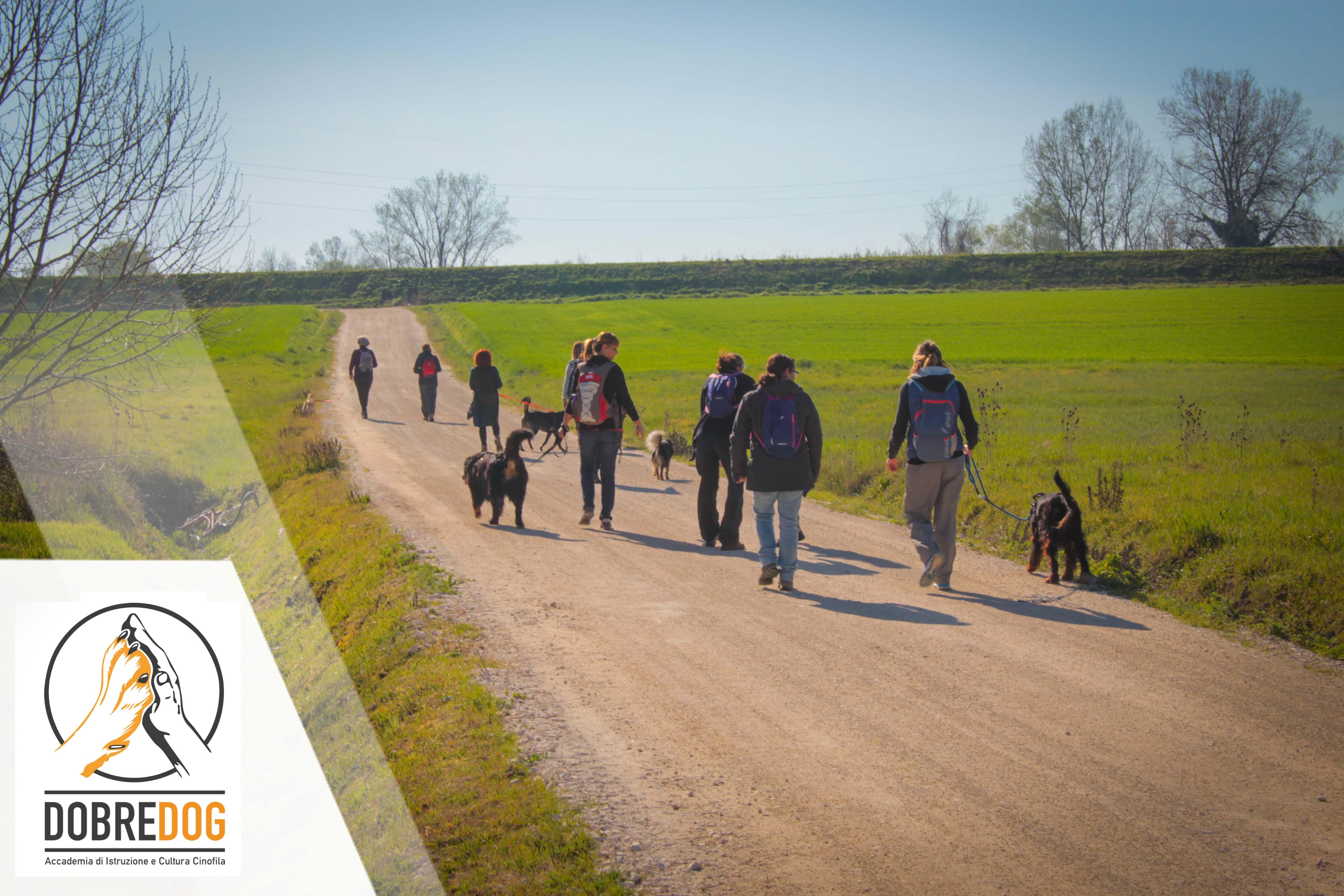 Dog Trekking - Centro Cinofilo Dobredog