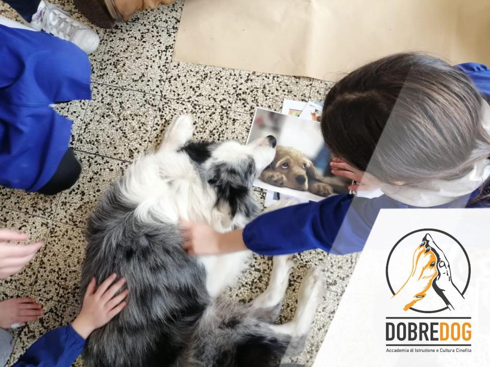 progetto-con-cani-scuola-elementare