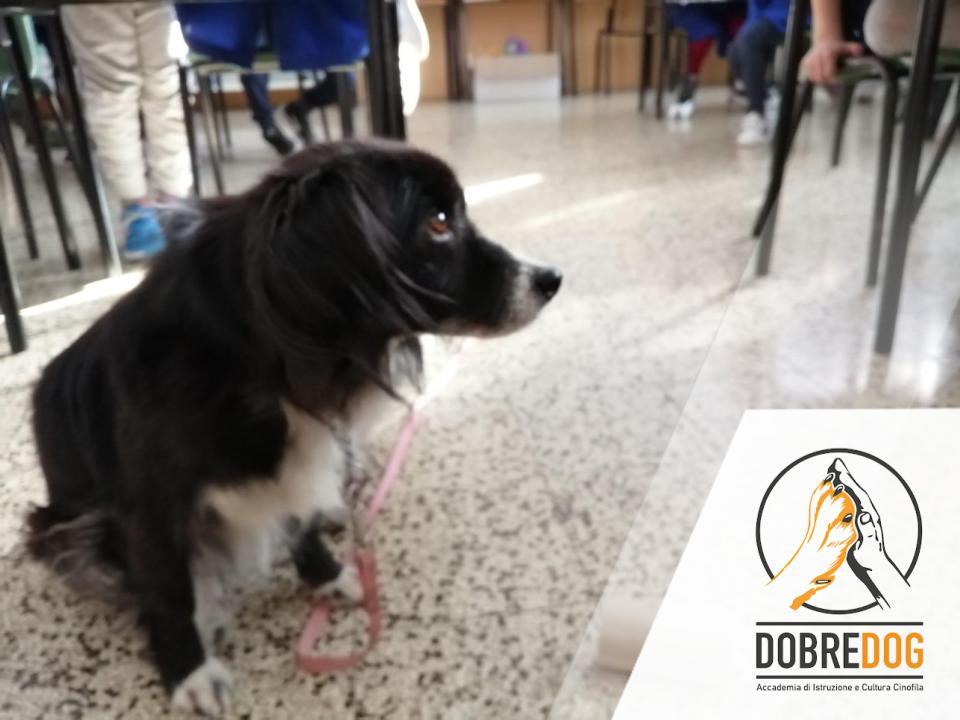 Conoscere il cane - progetto con bambini delle scuole elemantari