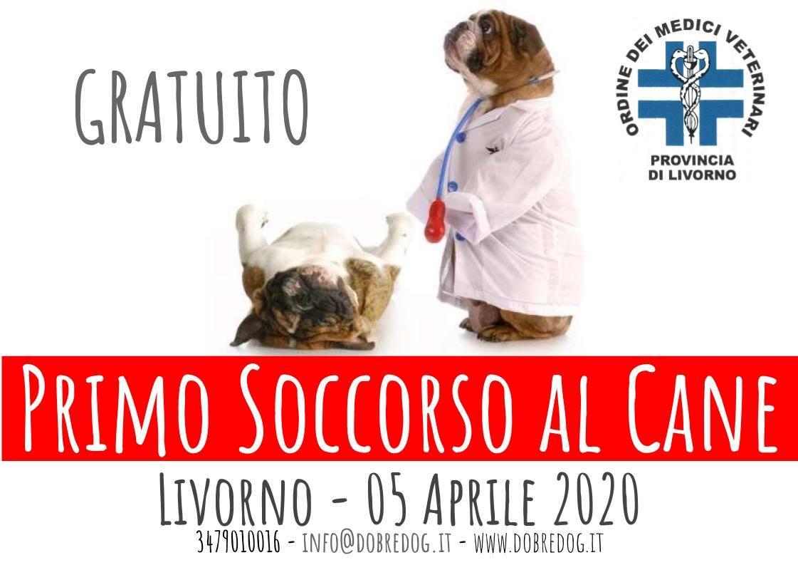 Convegno primo soccorso al cane a Livorno con patrocinio ordine dei veterinari