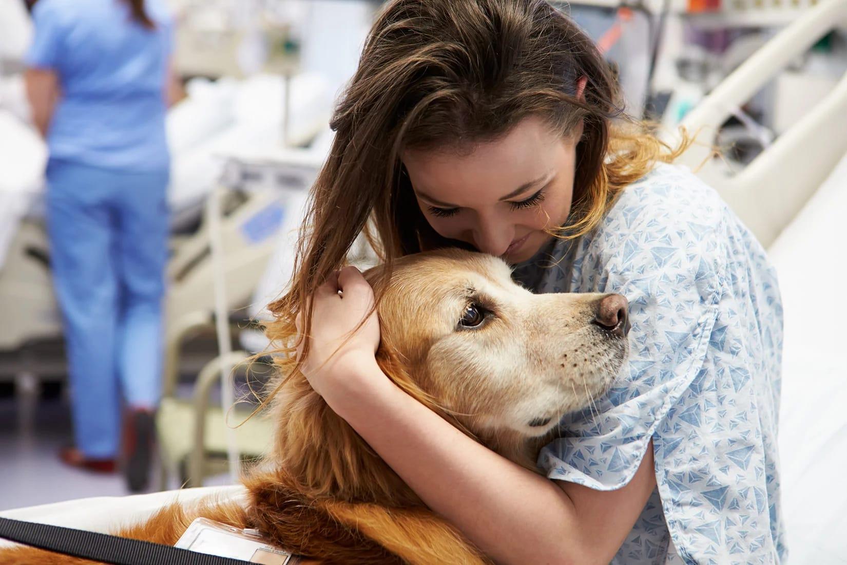 coronavirus e cani
