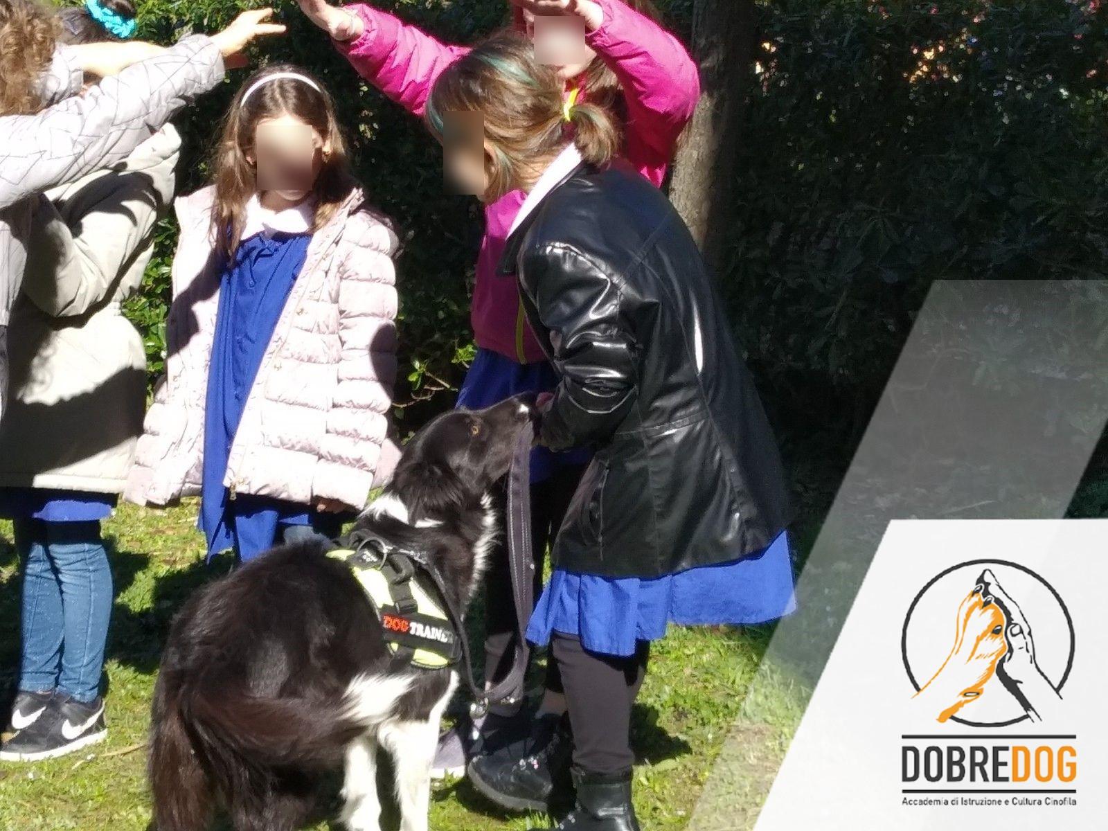 Progetto scolastico per la prevenzione del Bullismo - Dobredog