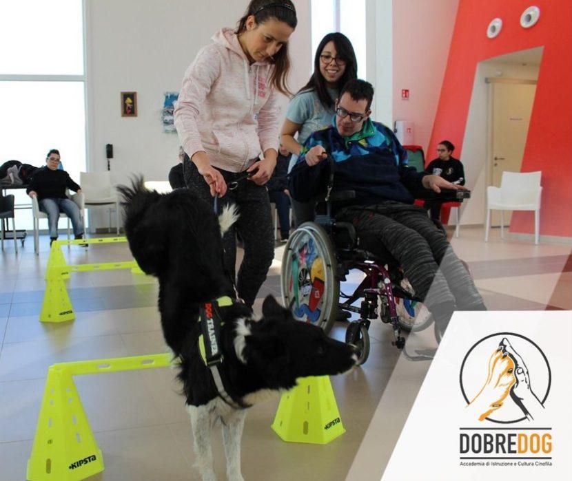 Progetto Pet Therapy Persone e cani in movimento