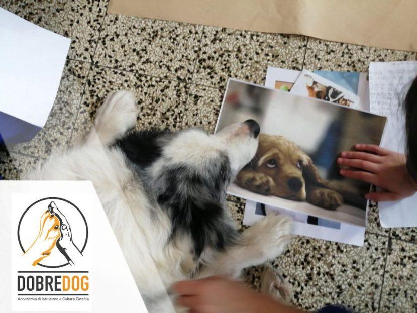Progetto con il cane nelle scuole
