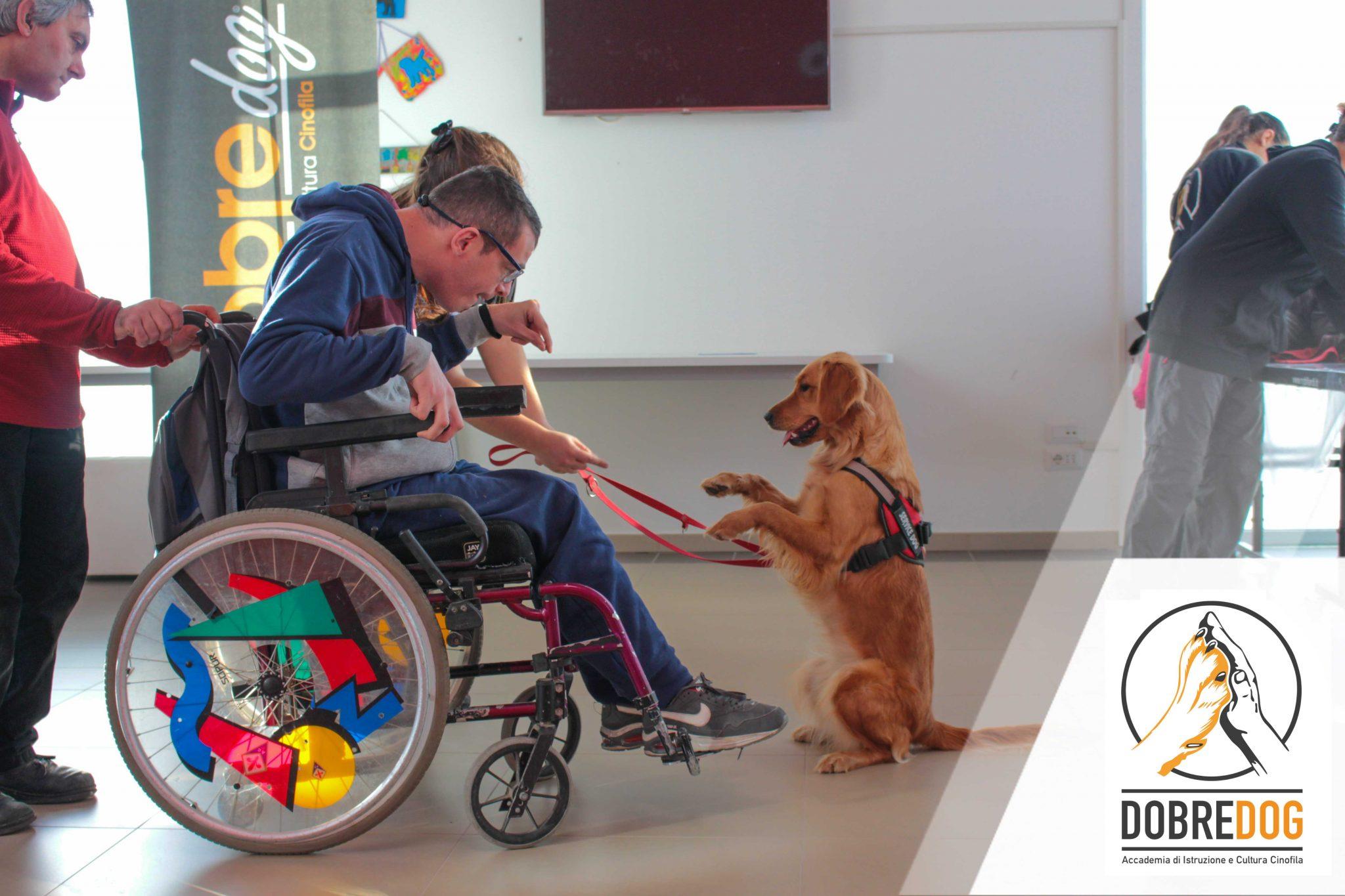 ragazzo in carozzina al centro poliedrico villa baciocchi progetto pet therapy