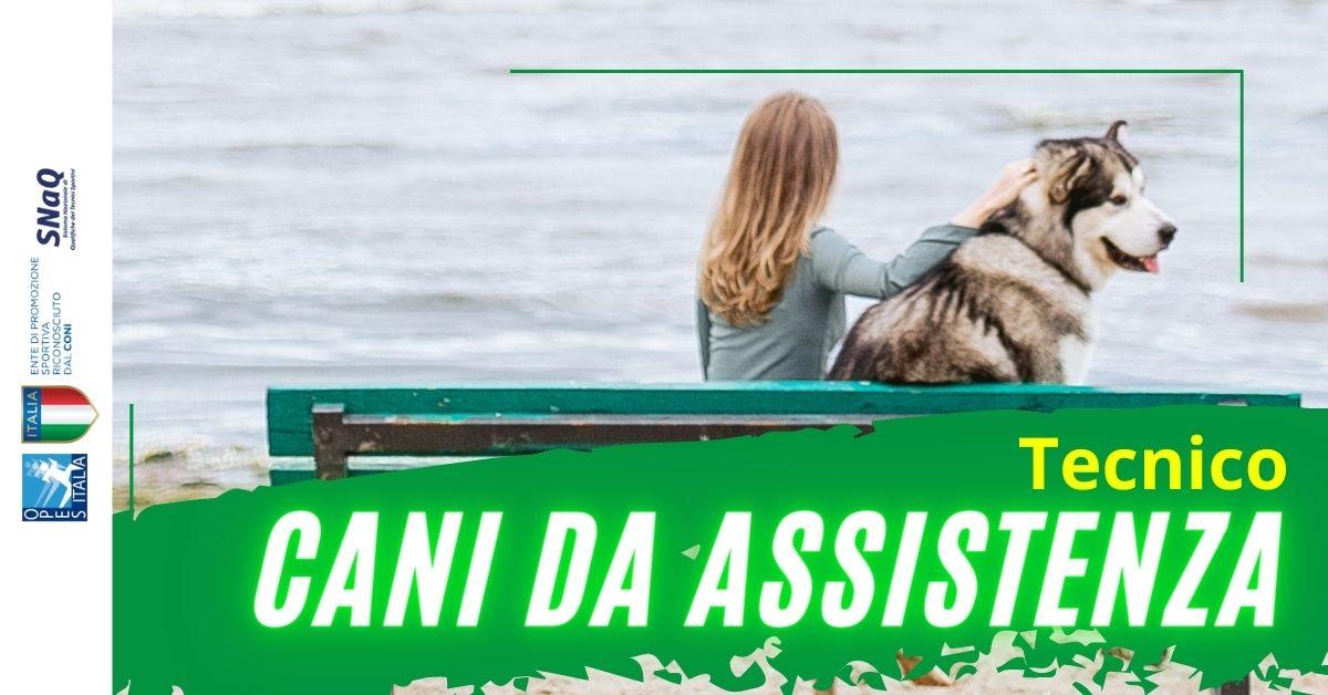 Cani d'assistenza per disabili