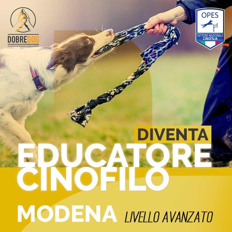educatore cinofilo modena