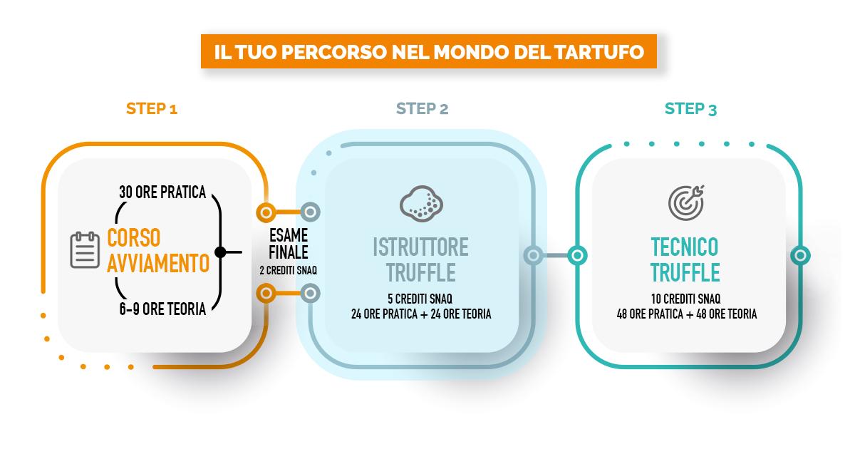 infografica percorso truffle detection
